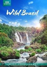 Vahşi Brezilya / Wild Brazil