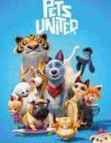 Evcil Hayvanlar Birliği