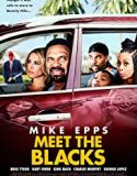 Black Ailesi / Meet The Blacks