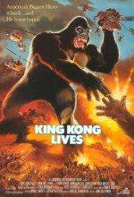 King Kong Yaşıyor / King Kong Lives